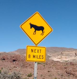 Burro road sign on Route 66 near Oatman