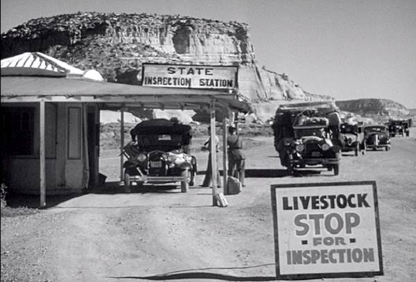 A still from The Grapes of Wrath, the border inspection point at Lupton AZ