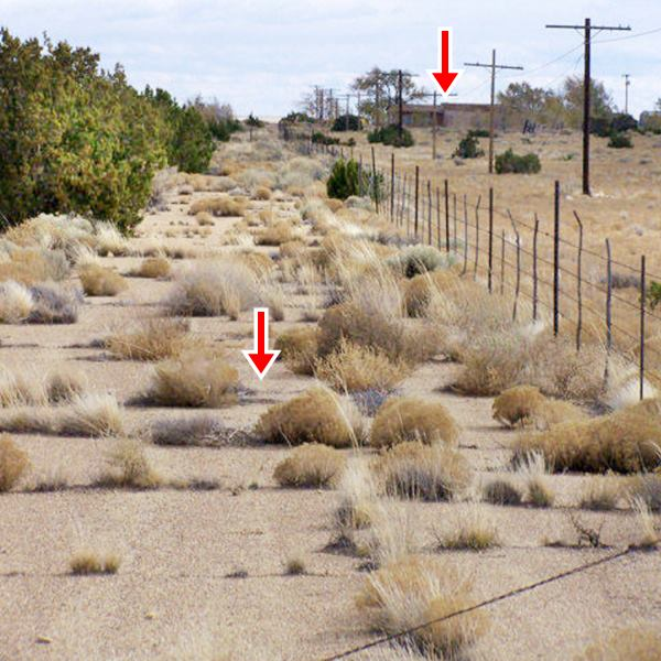 original road surface of US66 with weeds growing through the cracks in the paving