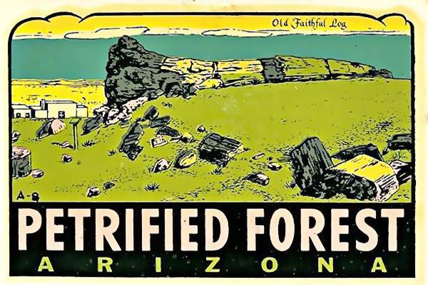 Vintage Travel Decal of the Petrified Forest on Route 66 near Holbrook  Arizona