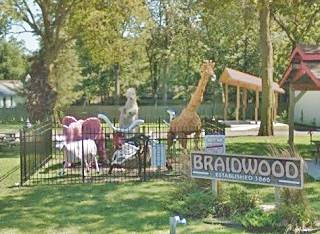 "The ""Zoo"" in Braidwood US66"