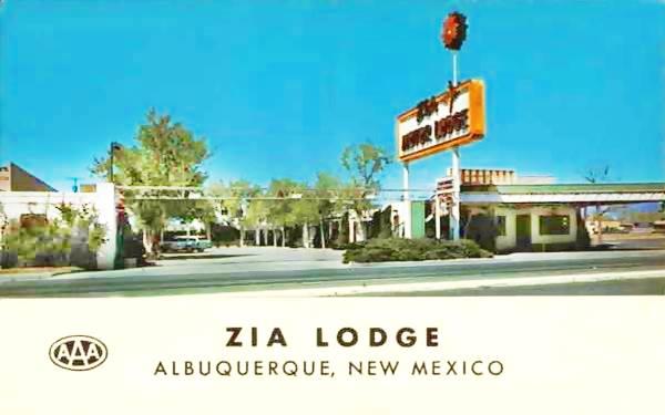 Vintage 1950s postcard of the Zia Motor Lodge Albuquerque NM
