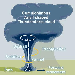 Tornado a diagram